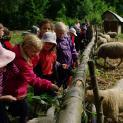 Wycieczka do Skansenu Rolnego